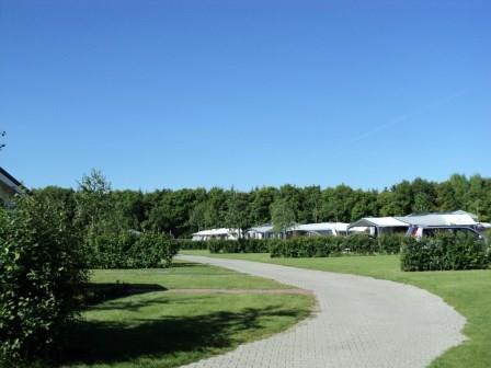 Camping de Moesberg kampeerveld